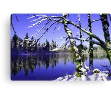 Painted Winter Reflections Canvas Print