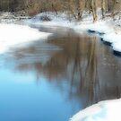 The Calm on Otter River  by Rebecca Bryson