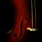 Cello by Areej Obeid