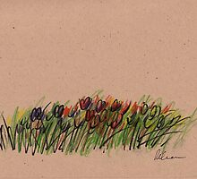 Tulips - original drawing  by Rebecca Rees