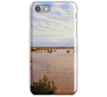 Sea Level iPhone Case/Skin
