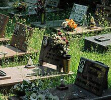 Cimitero by Janelle Mikolaizik