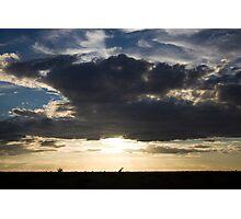 Giraffe in Silhouette Photographic Print
