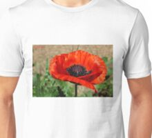 Beauties Brilliance  Unisex T-Shirt