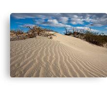 Mesquite Sand Dunes Canvas Print