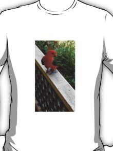 GEORGE THE KING PARROT T-Shirt