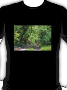 Springtime Stroll on a Country Lane T-Shirt
