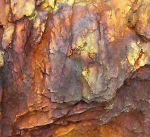 Colours of Uluru by Kathie Nichols