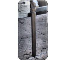 Horse in the Quarter iPhone Case/Skin