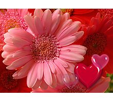 Have a happy Valentine's day Photographic Print