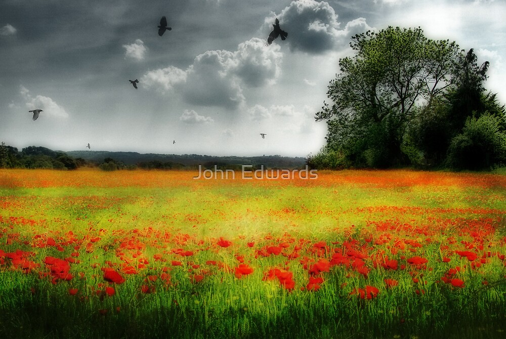 The sweetest dreams by John Edwards