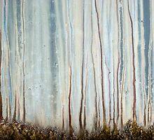 Earth Glow by Barbara Ingersoll