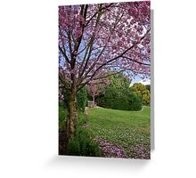 Cherry blossom time Greeting Card