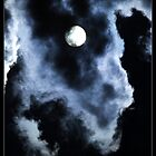 The Beast by Michael Bullis