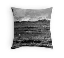 Slice of earth Throw Pillow