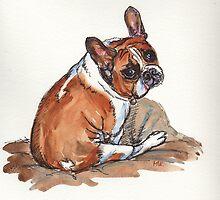 Winston. by Maureen Whittaker