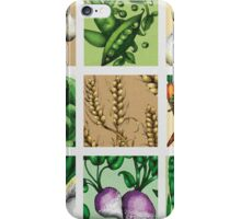 Farmers Medley - Vegetables iPhone Case/Skin