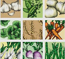 Farmers Medley - Vegetables by janelledimmett