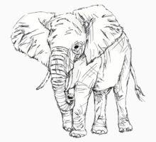 Lone Elephant Kids Clothes