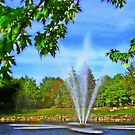 Fountain  Water Pattern  by fiat777