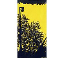 Lonly Lamp pole Photographic Print