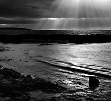 Light On The Firth by Blackgull