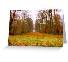 Poplars near Agincourt (Pronounced Azincourt here in France) Greeting Card