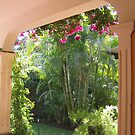 Palms and Bougainvillea by Pat Yager