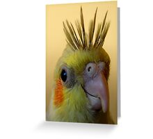 cockatiel portrait (spikee) Greeting Card