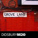 DIDSBURY M20 - 08 by exvista