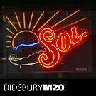 DIDSBURY M20 - 13 by exvista