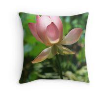 Sunlit Opening Lotus Throw Pillow