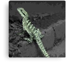 Iguana lizard Canvas Print