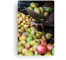Mangoes in a market Canvas Print