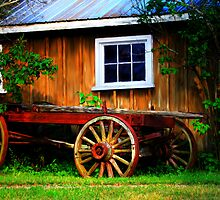 Pioneer Wagon by Renee Dawson