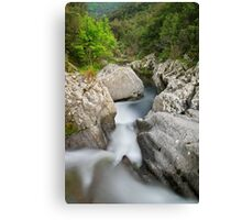 Flow in the Verne river Canvas Print