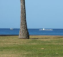 Submarine of Ala Moana Park by Edith Farrell