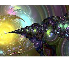 Jeweled Spirals Photographic Print