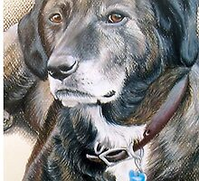 My Pet Brindle Dog by UniqueCase