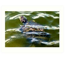 Snapping turtle closeup Art Print