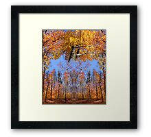 Crown Trail Blazing Framed Print