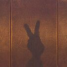 Rabbit Shadow by chelsgus