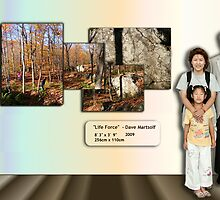 Life Force Advertisement with Our Family Photo for Scale by Dave Martsolf