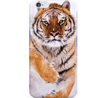 Running At Snow Siberian Tiger iPhone Case/Skin