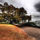 A Walk to Remember  by Matthew Jones