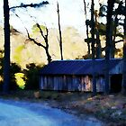Abandoned - A Watercolor by Lisa Taylor