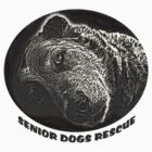 Old Dog for Seniors Rescue by SeniorDogs