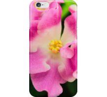 Pink viola iPhone Case/Skin