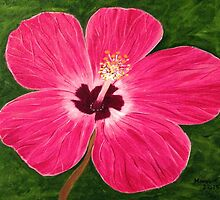Pink Hibiscus  by maggie326