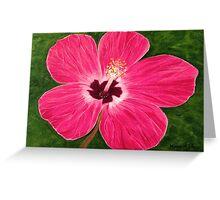 Pink Hibiscus  Greeting Card